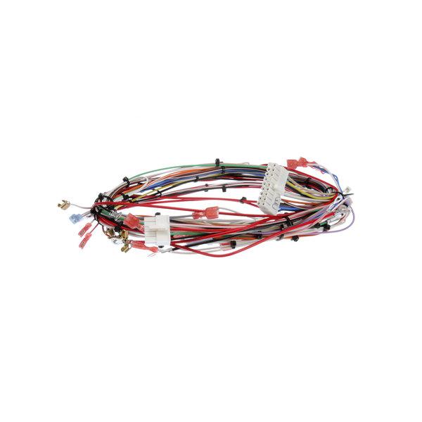 Bunn 33634.0040 Wiring Harness, Main Dual-Sh