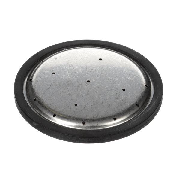Bunn 35308.1005 17 Hole Spray Head