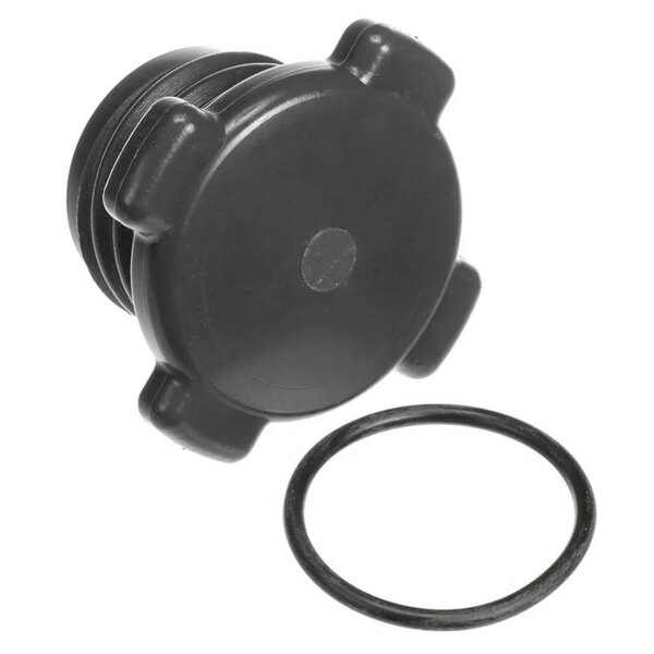 Hobart 00-913102-00403 Kit, Wash Arm Plug & O-Ring Main Image 1