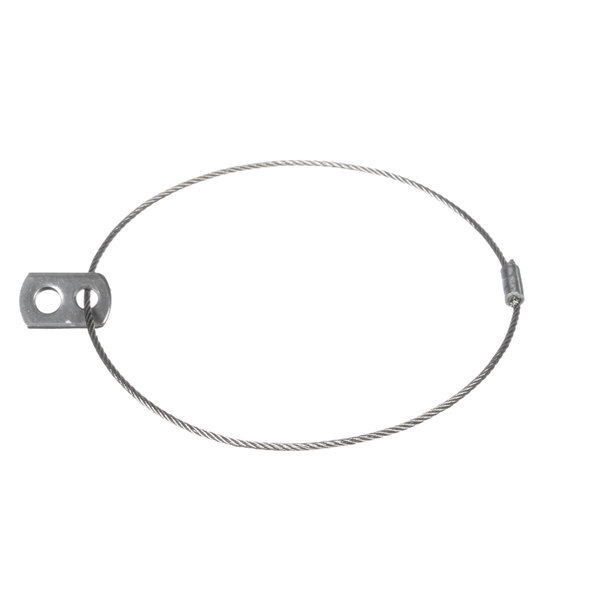 SaniServ 109031 Spring Cable Assy