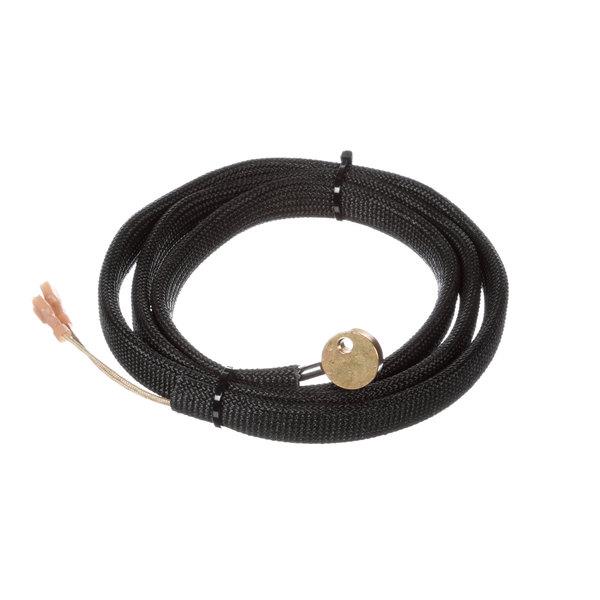 1287475 456884 wire harness for lollipop probe