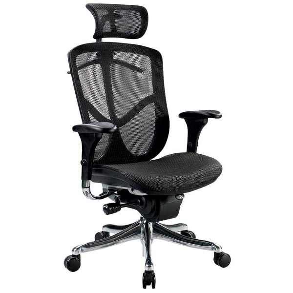 Charmant Eurotech Seating FUZ9LX HI BKALU Fuzion Black Luxury Mesh High Back Swivel  Office Chair With Head Rest