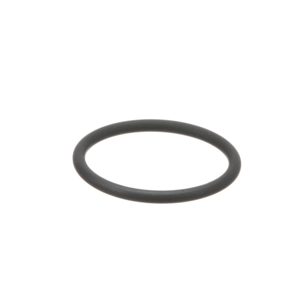 Fresh'n Squeeze 7486132 O-Ring Nozzle