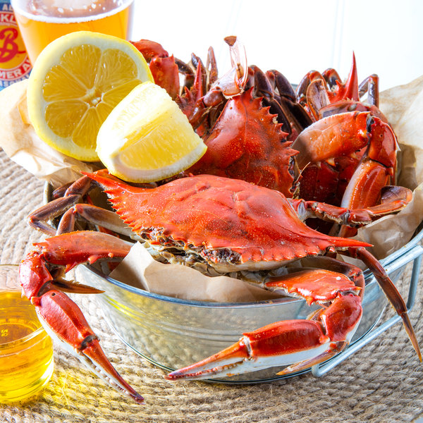"Linton's Seafood 5 1/4"" Non-Seasoned Steamed Medium Maryland Blue Crabs - 42/Case"
