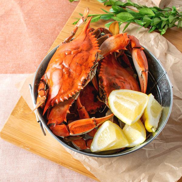 "Linton's Seafood 5 1/4"" Live Medium Maryland Blue Crabs - 84/Case"
