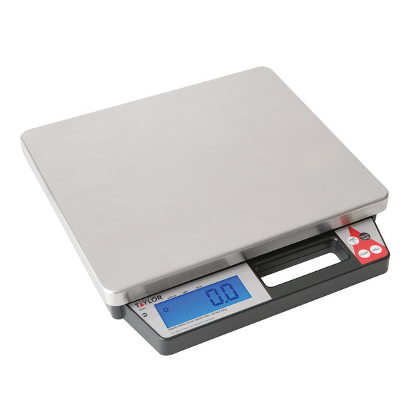 Taylor TE250 250 lb. Digital Receiving Scale with Built-In Handle