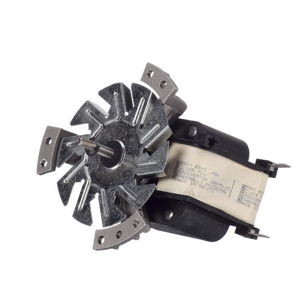 Amana Commercial Microwaves 59004038 Convention Motor Main Image 1