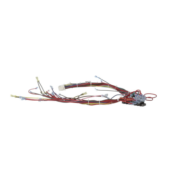 Southbend 1179593 Wire Harness