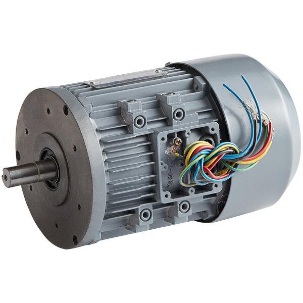 Backyard Pro Motor for Vertical Band Meat Saws - 110V, 1 hp Main Image 1