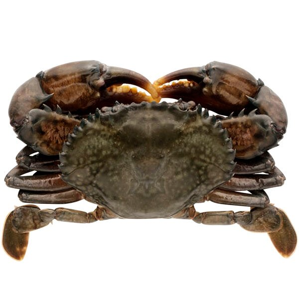 """Handy Whale Soft Shell Domestic Crabs 5 3/4"""" - 18/Case Main Image 1"""