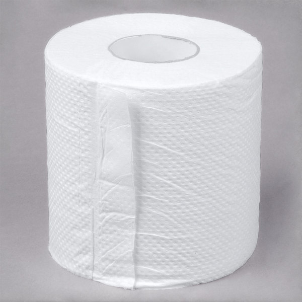 Lavex Janitorial Individually-Wrapped 2-Ply Standard 500 Sheet ...