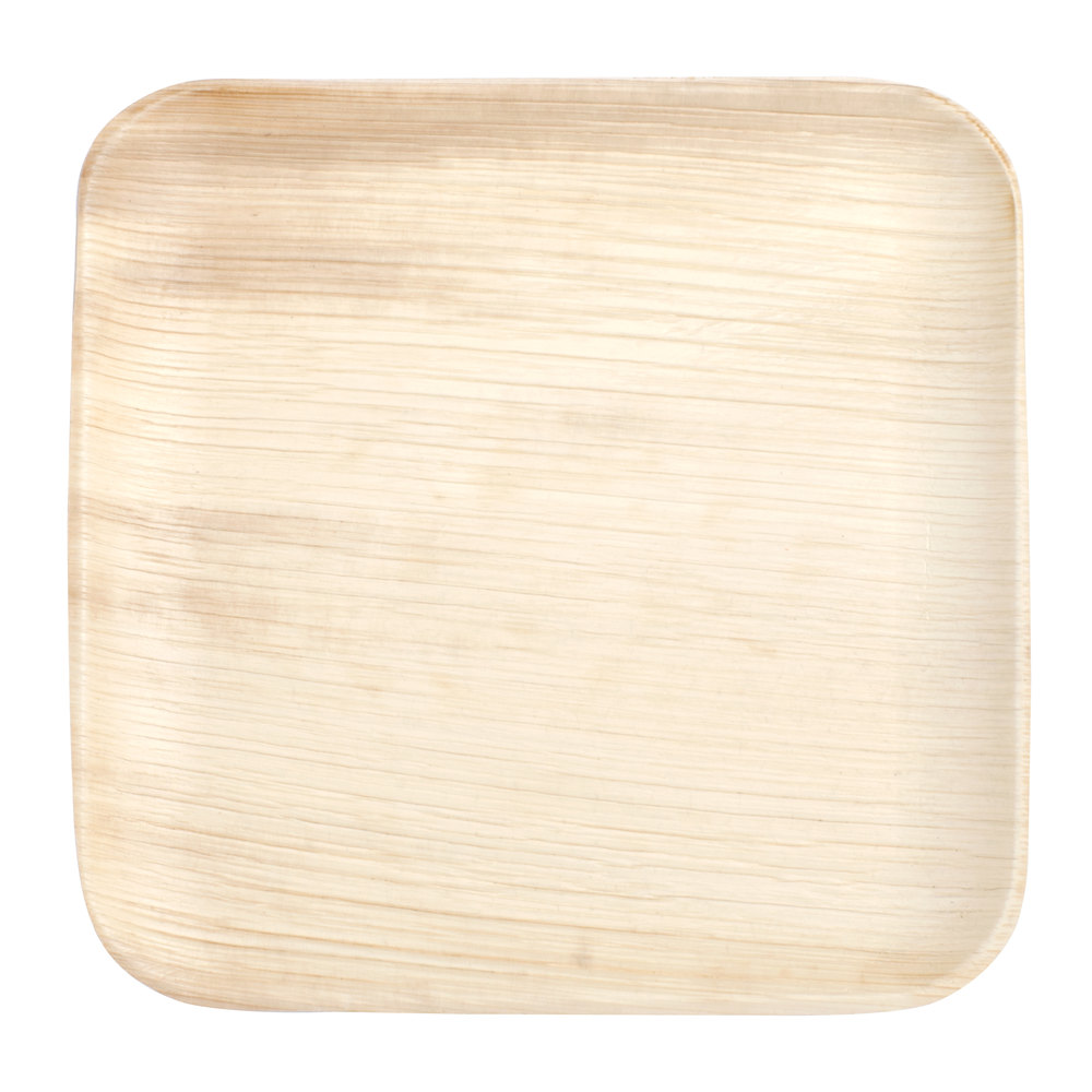 Eco-gecko 25068 6 inch Sustainable Square Palm Leaf Plate - 100/Case  sc 1 st  WebstaurantStore & Eco-gecko 25068 6