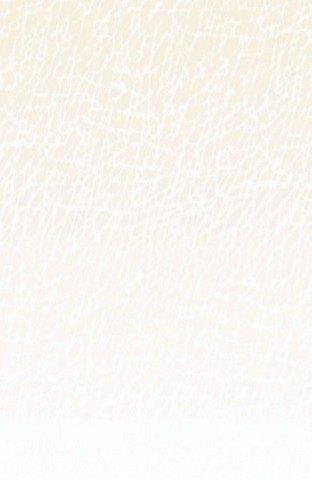"8 1/2"" x 11"" Menu Paper Middle Insert - Southwest Themed Desert Design - 100/Pack"