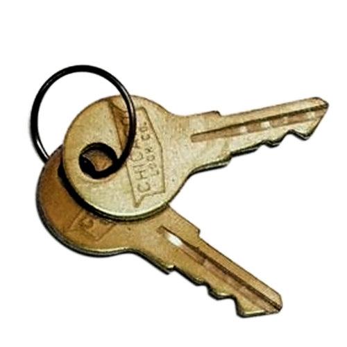 True 831307 Replacement Keys for True Merchandisers and Refrigerators