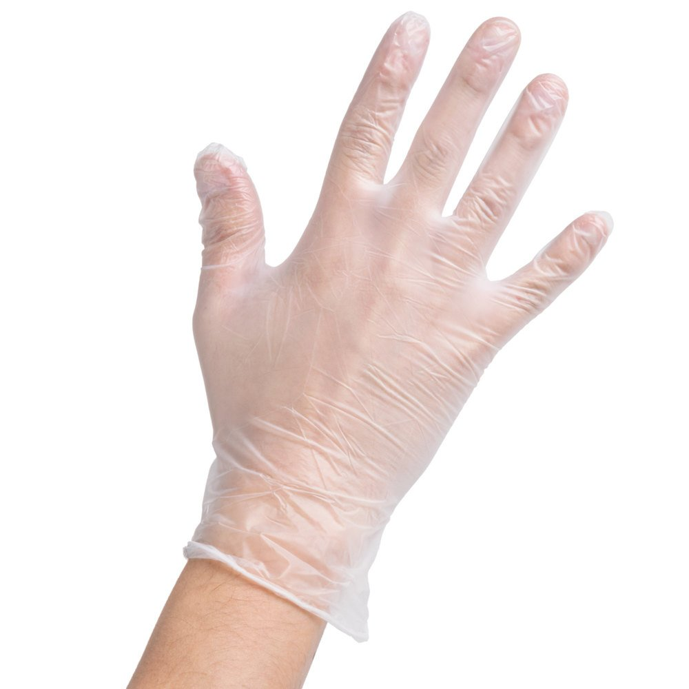 Noble Products Large Powder Free Disposable Vinyl Gloves