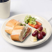 Creative Converting 28161031 10 inch Ivory Plastic Plate - 240/Case
