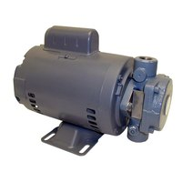 All Points 68-1119 Filter Pump Motor - 110-115/220-230V, 1/2 hp, 1725 / 1425 RPM