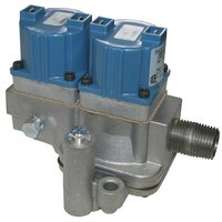 All Points 54-1030 Dual Natural Gas Solenoid Valve; 1/2 inch FPT; 120V