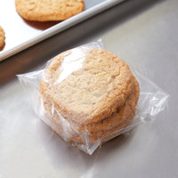 Plastic Lip and Tape Resealable Sandwich / Cookie Bag 5 inch x 5 inch - 1000/Case