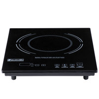 Eurodib P3D Countertop Induction Range with Digital Temperature Controls