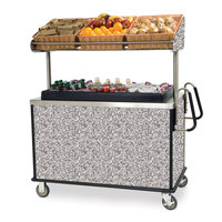 Lakeside 668 Stainless Steel Vending Cart with Insulated Polyethylene Ice Bin, Overhead Shelf, and Gray Sand Finish - 28 1/2 inch x 54 3/4 inch x 67 inch