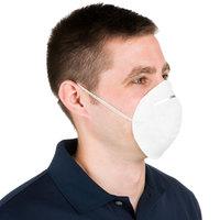 General Purpose Nuisance Dust Mask - 50/Box