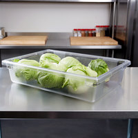 Cal-Mil Clear Housing Insert Pan - 18 inch x 26 inch x 6 inch