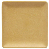 Elite Global Solutions ECO1010SQ Greenovations 10 inch Rattan-Colored Square Plate