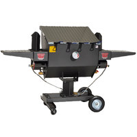 R & V Works FF4 12 Gallon Outdoor Cajun Deep Fryer with 1 Divider
