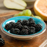 Carlisle 5401815 Mingle 4.5 oz. Aqua Melamine Fruit Bowl - 48/Case