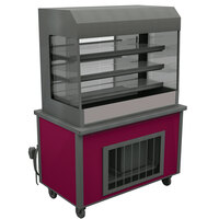 Delfield ASM-36 36 inch Drop-In Refrigerated Horizontal Air Curtain Merchandiser - 8.2 cu. ft.