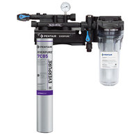 Everpure EV9797-21 Kleensteam II Single Water Filtration System - 5 Micron and 2.5 GPM