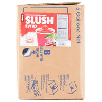 Carnival King 5 Gallon Bag in Box Cherry Slushy Syrup
