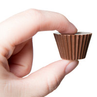 Matfer Bourgeat 380141 Polycarbonate 24 Compartment Cup Chocolate Mold