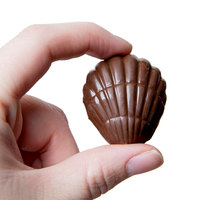 Matfer Bourgeat 380221 Polycarbonate 24 Compartment Shells Chocolate Mold