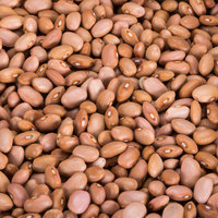 Dried Pink Beans - 20 lb.