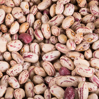 Dried Cranberry Beans - 20 lb.