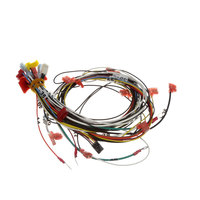 Antunes 0700931 Wire Harness