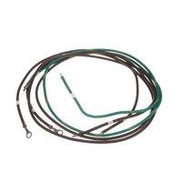 APW Wyott 56416 Wire Set