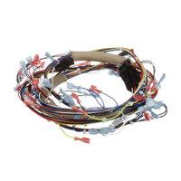 Vulcan 00-723530-00001 Wiring Harness