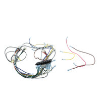 Southbend 1180482 Wiring Harness