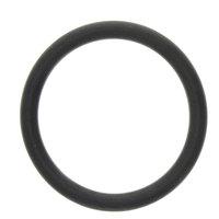 InSinkErator 12859 O-Ring