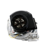 Eloma E501179 Combustion Blower Motor 2011