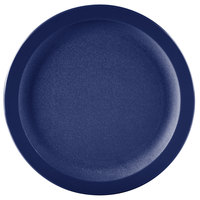 Carlisle PCD20950 Blue 9 inch Polycarbonate Narrow Rim Plate 48/Case