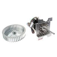 NU-VU 250-1027 Motor, Dual Voltage