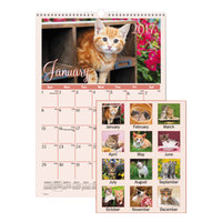 At-A-Glance DMW40028 12 inch x 17 inch Kitten Monthly January 2018 - December 2018 Wirebound Wall Calendar