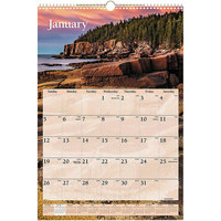At-A-Glance DMW20128 15 1/2 inch x 22 3/4 inch Scenic Monthly January 2020 - December 2020 Wirebound Wall Calendar