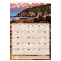 At-A-Glance DMW20028 12 inch x 17 inch Scenic Monthly January 2020 - December 2020 Wirebound Wall Calendar