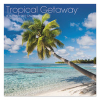 At-A-Glance LML71610 Landmark 11 inch x 12 inch Tropical Getaway January 2019 - December 2019 Wall Calendar