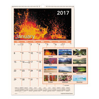 At-A-Glance DMW40328 12 inch x 17 inch Mother Nature Monthly January 2018 - December 2018 Wirebound Wall Calendar